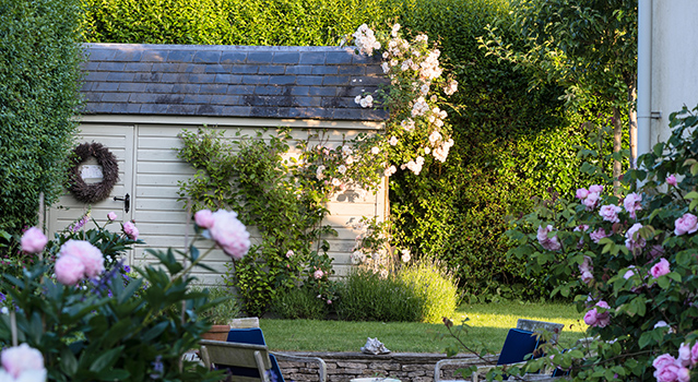 Wooden shed in country garden with peonies and roses