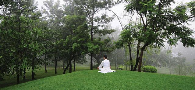 Woman meditation ananda, himalayas, india, asia