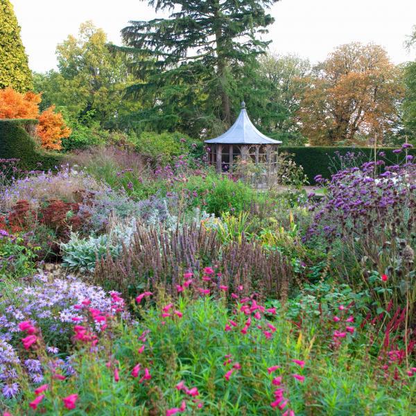 Garden makeovers are blooming, reveals Hiscox Renovations report