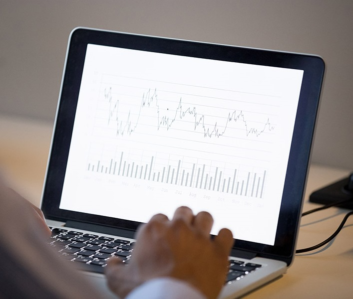 A finance professional looking at charts on their computer
