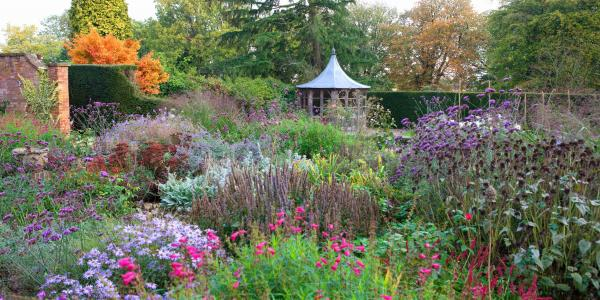 Garden makeovers are blooming, reveals Hiscox Renovations report